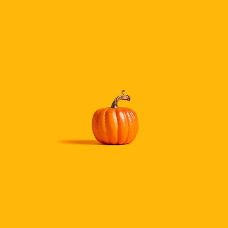 Foto de Autumn orange pumpkin on an orange background - Imagen libre de derechos