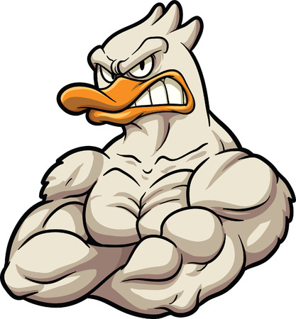 Strong cartoon duck mascot  Vector clip art illustration  All in a single layer