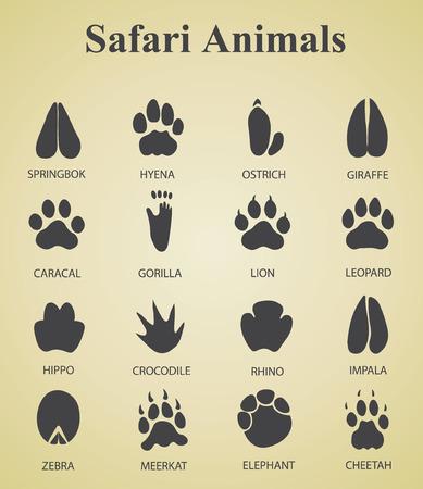 Illustration for set of safari animal tracks - Royalty Free Image