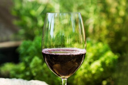 A glass of wine in a close up view in the garden with plants behind