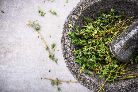Photo pour Fresh organic thyme in concrete pestle or mortar. - image libre de droit