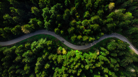 Photo pour Winding road trough dense pine forest. Aerial drone view, top down. - image libre de droit