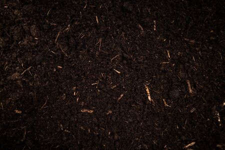 Photo pour Garden Soil , Dark Cultivated Turf Soil , Gardening and Farming Concept, Background. - image libre de droit