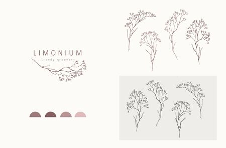 Illustration pour Limonium, babys breath  and branch. Hand drawn wedding herb, plant and monogram with elegant leaves for invitation save the date card design. Botanical rustic trendy greenery vector illustration - image libre de droit