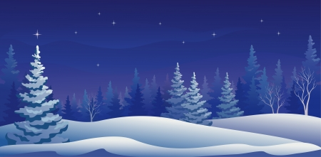Vector illustration of a beautiful winter night forestのイラスト素材