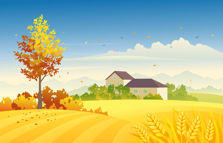 illustration of an autumn farm scene with wheat fields and bright foliage tree