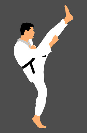 Karate man fighter in kimono, vector illustration. Black belt category.