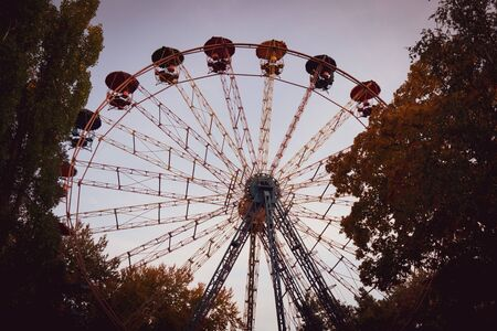 Photo for Ferris wheel in the forest. - Royalty Free Image