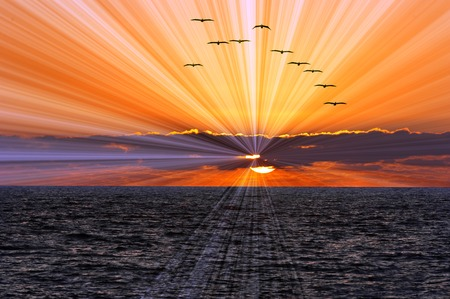 Photo pour Ocean sunset sun rays is a flock of birds flying overhead while a brilliant bust of sun ray beams shoot of from behind the clouds clouds and the sun sets on the calm blue ocean waves. - image libre de droit