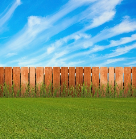 Photo for Green grass in garden with fence - Royalty Free Image
