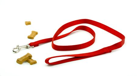 Dog Leash and Biscuits Ready for a Walk
