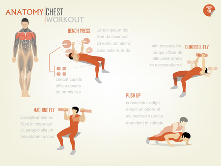 beautiful design infographic of chest workout consist of bench press,dumbbell fly,machine fly and push up