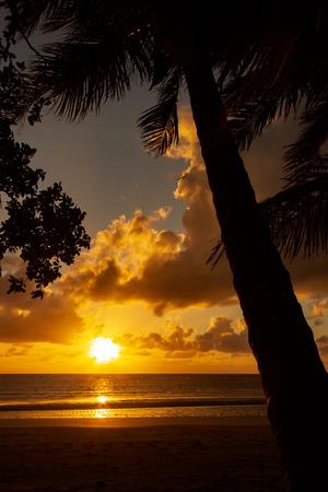 Photo pour Sunrise at Cape Tributation in the Daintree region of far north Queensland. Cape Tribulation is a remote headland and ecotourism destination in northeast Queensland. - image libre de droit