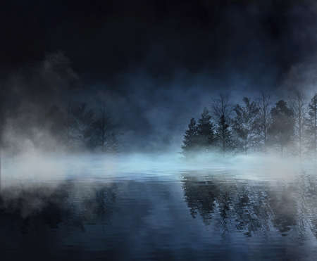 Photo pour Dark abstract winter forest background. Wooden floor, snow, fog. Dark night background in the forest with moonlight. Night view, magic. Fantasy forest. - image libre de droit
