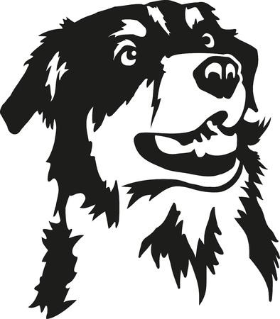 Illustration for Australian Shepherd head - Royalty Free Image