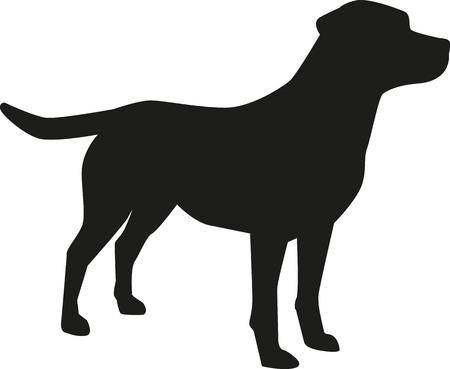 Ilustración de Labrador Retriever silhouette - Imagen libre de derechos