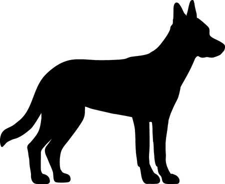 Illustration pour Malinois in black with silhouette - image libre de droit