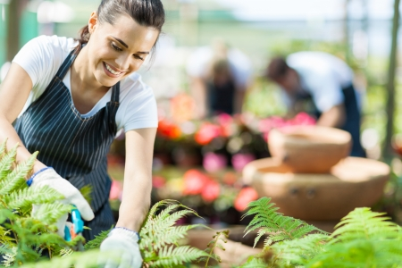 Photo for beautiful female nursery worker working in greenhouse - Royalty Free Image