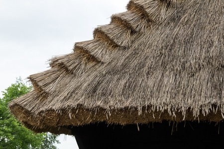 Traditional thatched roof on countryside, Poland