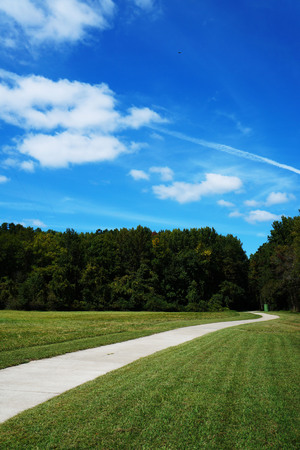 A path in a grassy area with trees and blue cloudy Sky