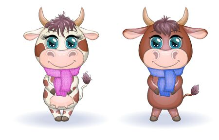 Cute cartoon couple cow and bull with scarves with beautiful big eyes. Symbol of the year 2021 according to the Chinese calendar. Children's illustration