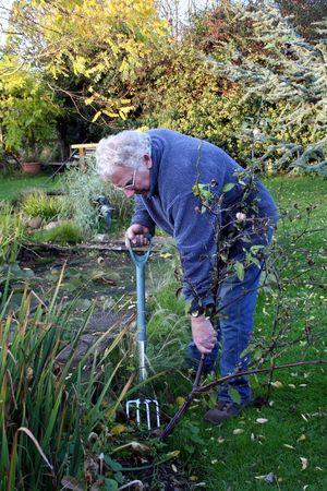 Male gardener weeding with a garden fork