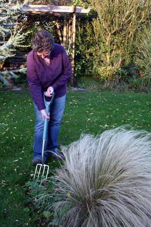 Female gardener digging a plant