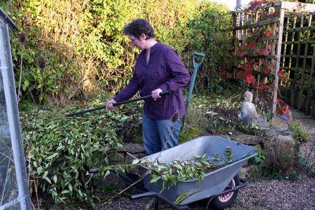 Female Gardener raking branches