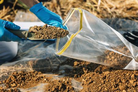 Photo pour Soil Test. Agronomist putting soil with garden shovel in soil sample bag outdoor. Environmental research - image libre de droit