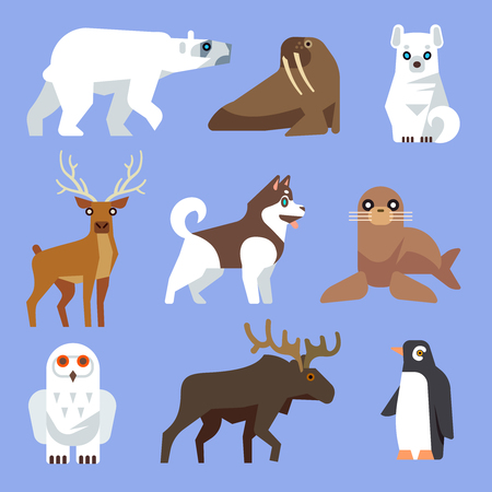 North Arctic and Antarctic animals and birds. Vector flat collection. Winter wild animal, polar animal, wildlife mammal animal illustration