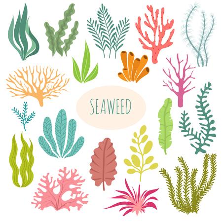 Illustration pour Seaweeds. Aquarium plants, underwater planting. Vector seaweed silhouette isolated set. Illustration of aquatic plant, nature wildlife - image libre de droit