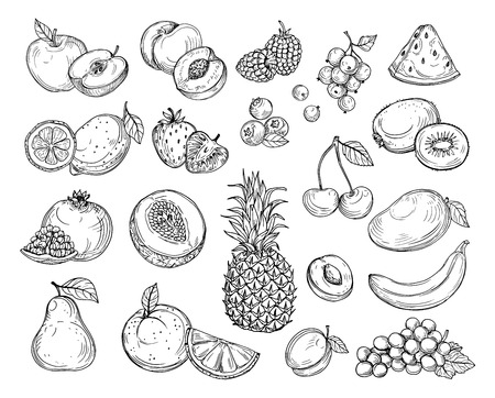 Illustration for Sketch fruits. Strawberry melon, peach mango. Banana pineapple, raspberry grapes hand drawn fruit berry vector set. Illustration of melon and banana, cherry and lemon - Royalty Free Image