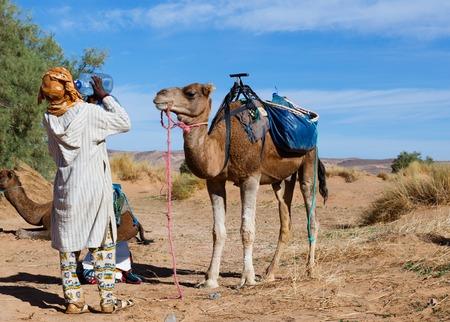 camel looks like a Berber drinking water from bottle