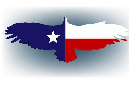 abstract  texas flag