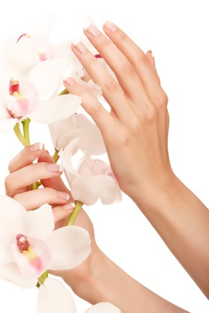 Hand and orchid over isolated white backgroundの写真素材