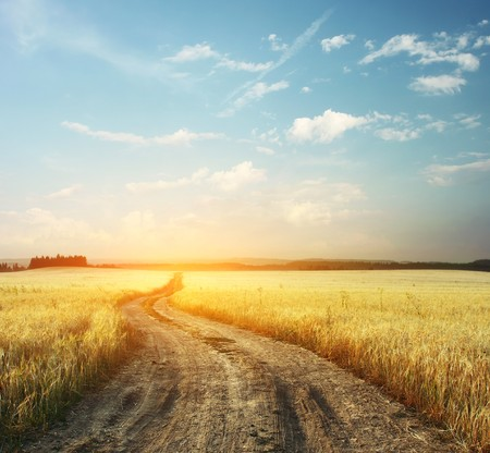 Photo pour Road in field and blue sky with clouds - image libre de droit