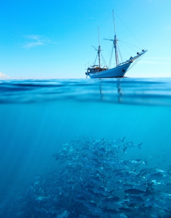Photo pour Sail boat in a tropical calm sea on a surface and large school of a Jackfish underwater - image libre de droit