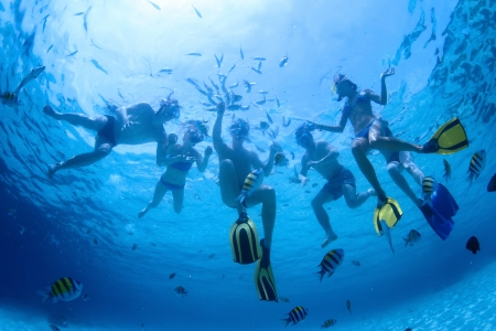 Underwater shoot of a group of friends snorkeling in a clear sea and feeding fish