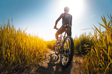Foto de Young athlete standing with bicycle on the meadow with yellow lush grass - Imagen libre de derechos