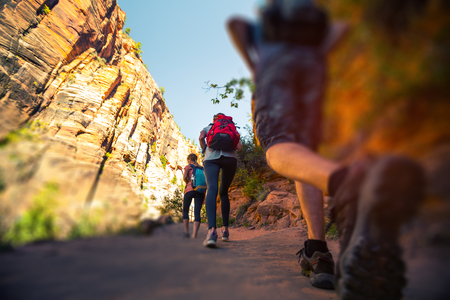 Hikers walk on the trail in the Zion National Park, USA