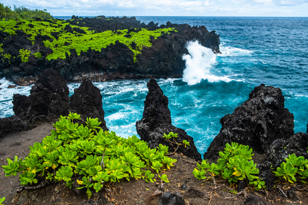 Foto de Sharp volcanic coast of the east Maui near the Waianapanapa State Park with green lush vegetation and fierce ocean waves. Hawaii - Imagen libre de derechos