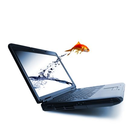 Goldfish jump out of the monitor