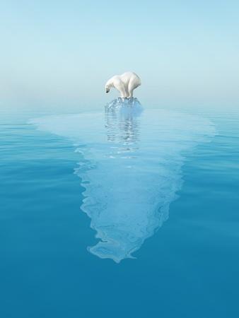 last polar bear on iceberg