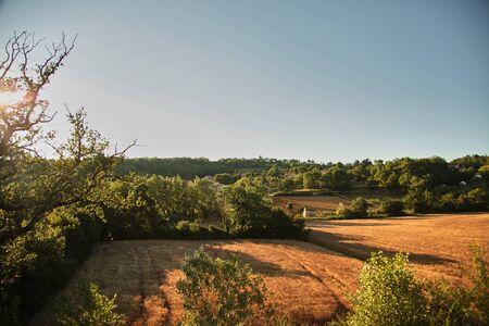 Foto de Agricultural fields at sunset, countryside landscape in the south of France at sunny summer evening - Imagen libre de derechos