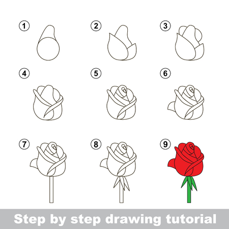 Step by step drawing tutorial. Vector kid game. How to draw a Rose