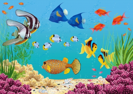 Underwater landscape with various water plants and swimming tropical fish  All objects are grouped