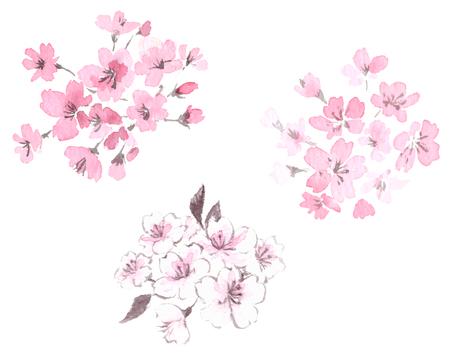Illustration pour Cherry blossom illustration set - image libre de droit