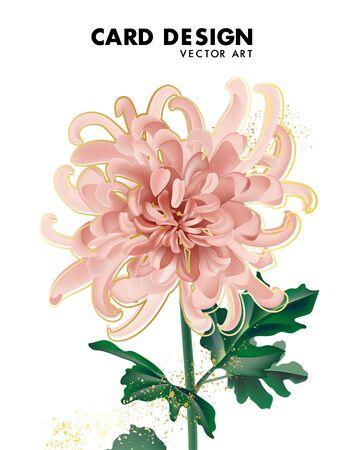 Illustration pour Beige chrysanthemum flower daisy bloom, big flower macro shape greeting card with gold letters, wedding design template. Lettering template on white, pastel vintage theme. Vector. - image libre de droit