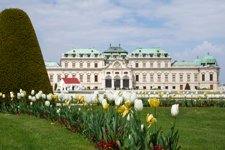 VIENNA, AUSTRIA - APR 29th, 2017: Belvedere is a historic building complex in Vienna, consisting of two Baroque palaces the Upper and Lower Belvedere , the Orangery, and the Palace Stables. Colorful tulips in the foreground