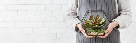 Photo for Woman holding mini succulent garden in geometric glass florarium vase at white brick wall, copy space. Gardening service concept, panorama - Royalty Free Image